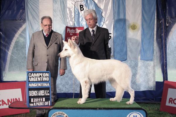 CH ARG - GCH ARG Alpaca de kupal kuyen